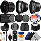 58MM Professional Accessory Kit for CANON EOS REBEL (T5i T4i T3i T2i T1i XT XTi XSi SL1) - Includes: 0.35x Super Wide Fisheye, 0.43x Wide Angle & 2.2x Telephoto Lenses + Remote Control + Vivitar Filter Kit (UV, CPL, ND8) + Vivitar Macro Close-Up Set + Tulip Lens Hood + Collapsible Lens Hood + Center Pinch Lens Cap + 2 Color Filters + Flash Diffuser Set + Deluxe Cleaning Kit with MagicFiber Microfibers